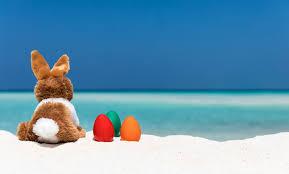 Interruzione DaD per vacanze pasquali.