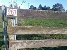 Rapid Numbering And Road Re Naming Project Opotiki District Council