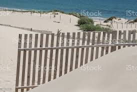 Wooden Fences On Deserted Beach Dunes In Tarifa Spain Stock Photo Download Image Now Istock