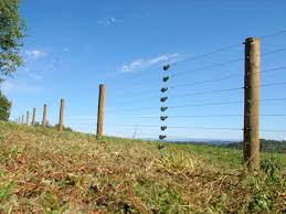 Electric Wire Electric Wire Fence