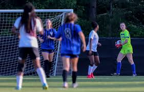 Chelsea, Vestavia Hills, Hoover each place 4 on girls soccer all-state team  - al.com