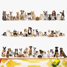 Newest Cats Baseboard Wall Stickers Dog Wall Pvc Wall Decals Adhesive Art Wallpaper Animals Party Home Decoration Diy Removable Wall Decals Home Decordecor Diy Aliexpress