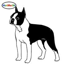 2020 Wholesale Car Styling Boston Terrier Dog Car Stickers Personality Vinyl Decal Motorcycle Accessories From Bulangying 14 58 Dhgate Com