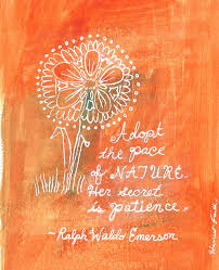 the wait is over a quote from ralph waldo emerson bk reader