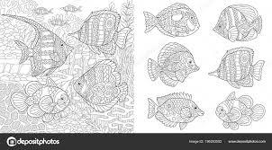 Onderwater Wereld Van Oceaan Shoal Van Tropische Vissen