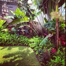 Tropical Garden Great For Along Back Fence Decor Design Realpalmtrees Com Palmtreelandsca Tropical Garden Design Tropical Landscaping Tropical Backyard