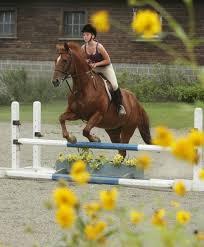 grace lavelle horseback riding is one