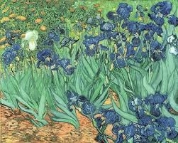 Van Gogh Irises 1889 Wall Decal