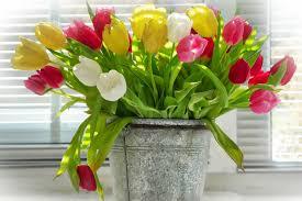 Niedrogie wazony na wiosenne kwiaty [do 50 i do 100 złotych ...