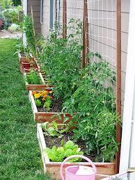 our suburban garden orto in giardino