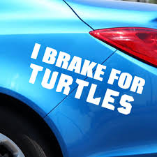 I Brake For Turtles Home Decor Car Truck Window Decal Sticker Car Accessories Motorcycle Helmet Car Styling Car Sticker Car Stickers Aliexpress