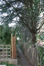 Trees On A Property Line What Are Your Rights Your Neighbor S Lawnstarter