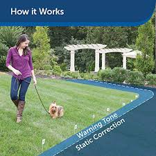 10 Best Invisible Dog Fences In 2020 In Ground Vs Wireless
