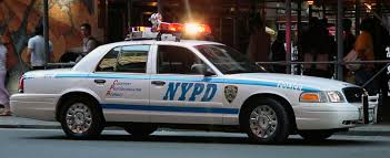 Ssp Mustang Crown Victoria Explorer Taurus Ford Police Interceptor Window Decal Furnacerestaurant Co Nz
