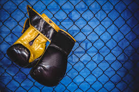 Free Photo Pair Of Boxing Gloves Hanging On Wire Mesh Fence