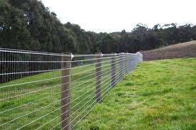 Economical Visually Appealing Fencing Options Livestock Fence Fence Options Horse Fencing