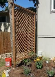 How To Get Added Privacy In Your Backyard By Building A Trellis Diy Garden Trellis Building A Trellis Diy Trellis