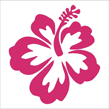 Hibiscus Flower 4 Hot Pink Vinyl Decal Window Sticker For Laptop Ipad Window Wall Car Truck Motorcycle Wall Decor Stickers Amazon Com