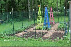 obelisk trellis for 10 momma d and
