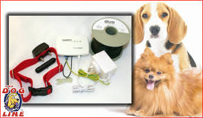 Proven Reliable And Safe Electric Dog Fence For Small Dog Solutions In Australia