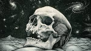 free skull wallpapers free at misc