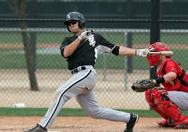 White Sox Are Confident Adam Engel Will Be A Contributor