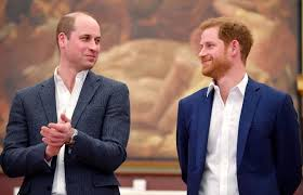 Battle of Brothers' by The Crown's Historical Consultant Details Prince  William & Harry's Rift