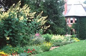 flower garden design basics