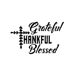 grateful thankful blessed printable sarcastic quotes t