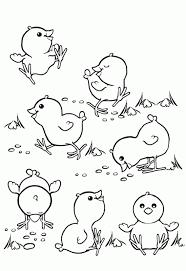 pollitos dibujo para colorear