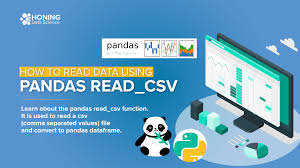 how to read data using pandas read csv