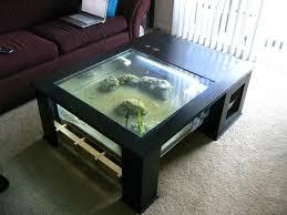fishtank coffee table glass bottom