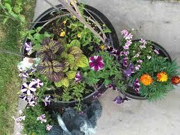 small backyard garden ideas tips