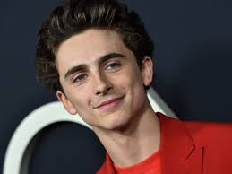 Timothée Chalamet Is Chill With All of Those Art Memes You're ...