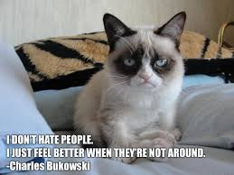 pics photos pictures funny grumpy cat