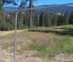 Deer Fence For Gardens Orchards And Property Lines