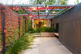 Wonder Wall The Climbing Plants That Can Improve Your Garden Houzz Au