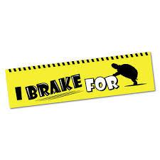 I Brake For Turtles Sticker Decal Bumper Car Vinyl Funny 5251en Ebay