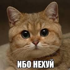 """Картинки по запросу """"ибо нехуй"""""""""""