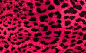 pink camo wallpaper 47 images