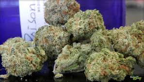 Buy Durban Poison Online - Weed Greenery