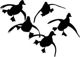 Amazon Com Flying Ducks Duck Hunting Vinyl Decal Sticker Bumper Car Truck Window 6 Wide Matte Black Color Home Kitchen
