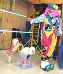 bigotin y lolita payasos para fiestas infantiles – LIENZO CHARRO ...
