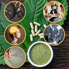 Kratom Addiction Treatment - Florida Drug & Alcohol Rehab