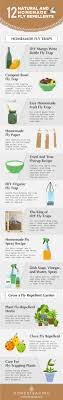 how to get rid of flies 13 natural