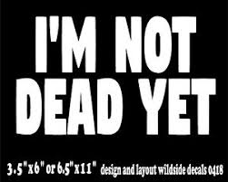 Funny Monty Python Holy Grail Quote Decal I M Not Dead Yet Window Vinyl Sticker Ebay