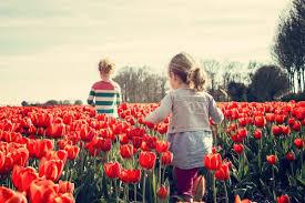 Primavera 2020: data e festività della stagione