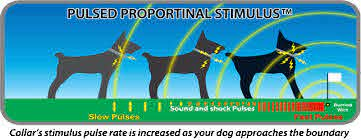 Dog Electric Fence Transparent Images Free Png Images Vector Psd Clipart Templates