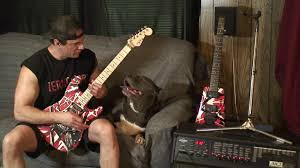HardRockBullys Don Guerrieri play Eddie Van Halen Eruption on EVH  Frankenstrat guitar with Pitbull - YouTube