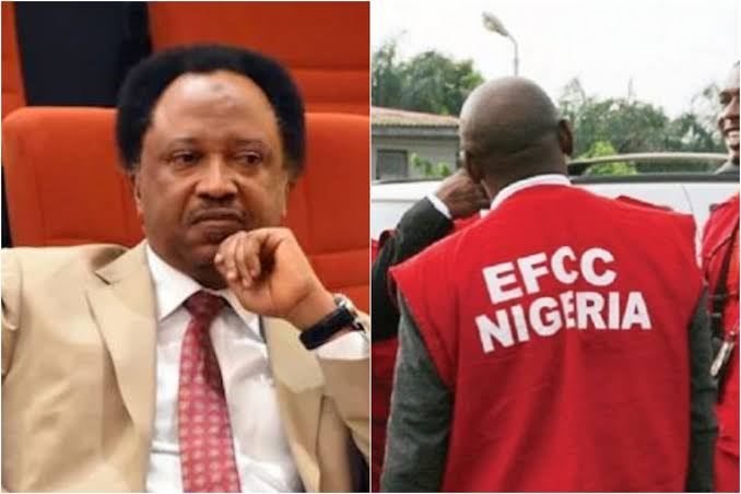 """Image result for Shehu sani released"""""""